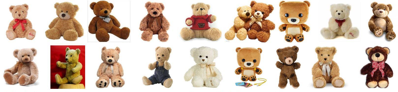 Adorable Bears
