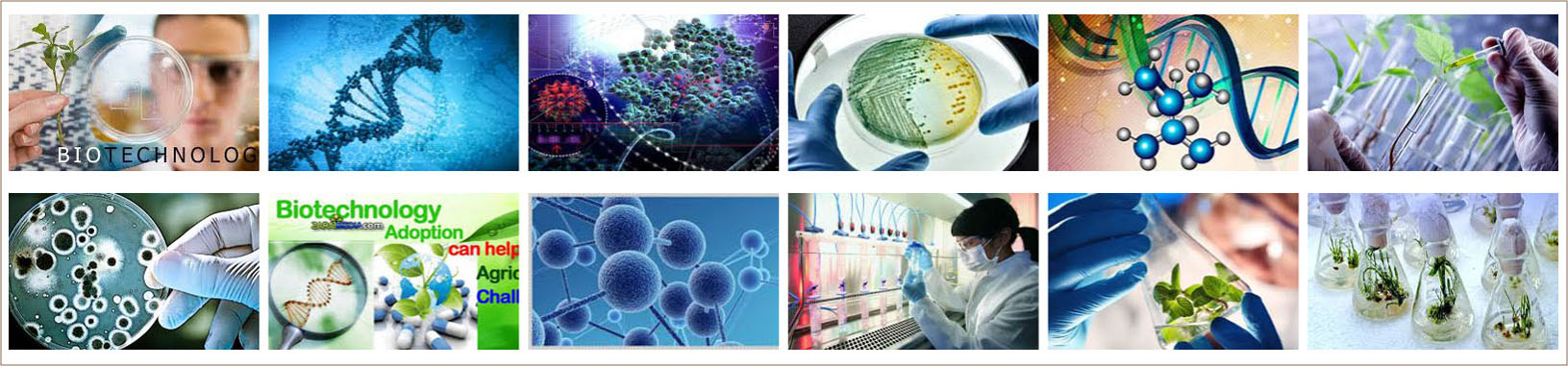 Biotechnology, Nanotechnology and Medical Electronics