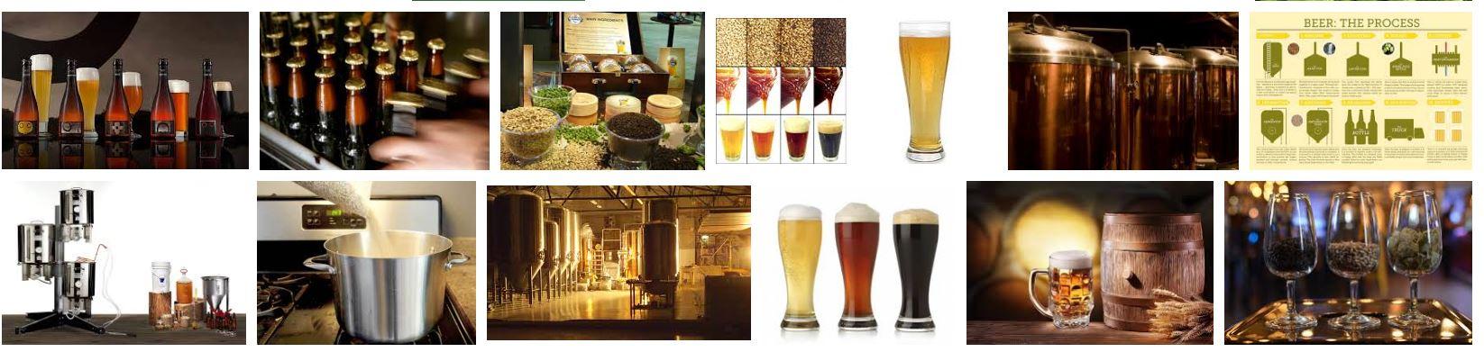 Micro Beer Club