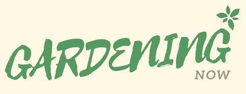Gardening Now