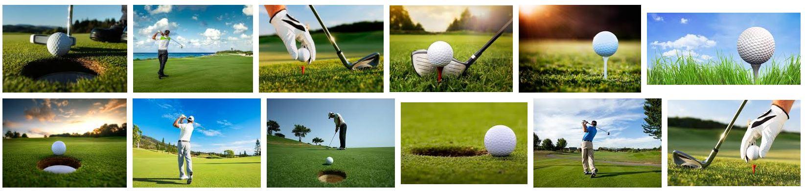 Seatemple Golf
