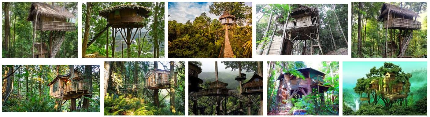 Rainforest Tree Houses