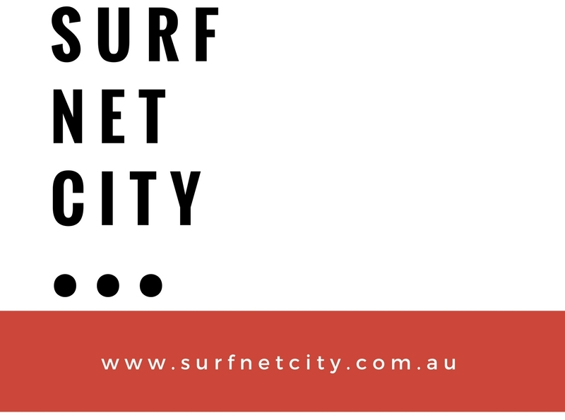 Surf Net City